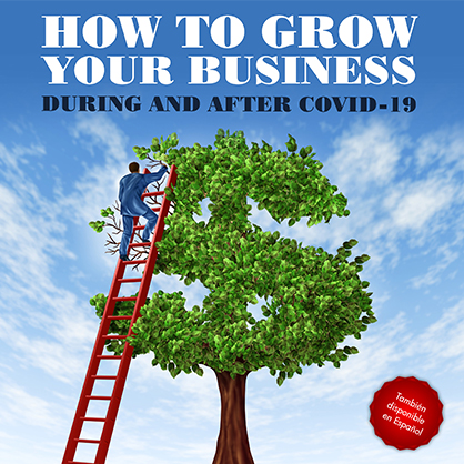 How to grow your business before and after Covid-19 Book Cover